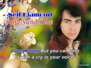 song sung blue lyrics